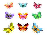 Nine Butterflies