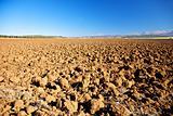 fields at Archidona