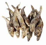 Dry salt fish on the white background. (Gobiidae), (isolated)