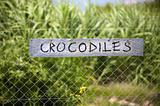 Crocodiles signboard