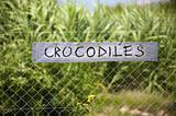 Crocodiles signboard
