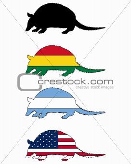 Armadillo flags