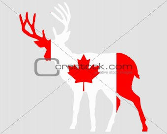 Canadian deer