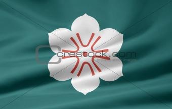 Flag of the japanese province of Saga