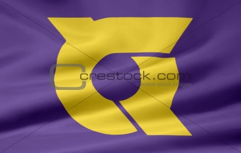 Flag of the japanese province of Tokushima