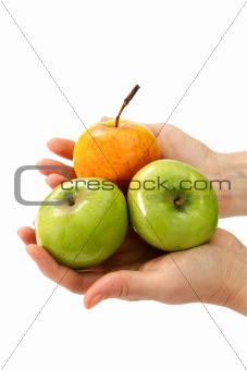 Beautiful woman's hands holding apple