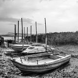 Desolated boats