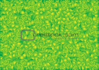 Background of green-yellow roses