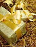 Golden Presents on Moss