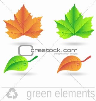 green design elements