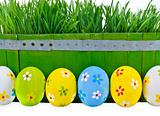 Easter eggs next to the bucket with the green grass