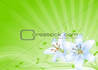 Easter lilies background