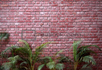 brick wall with palms