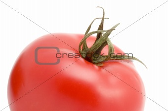 Tomato macro close up