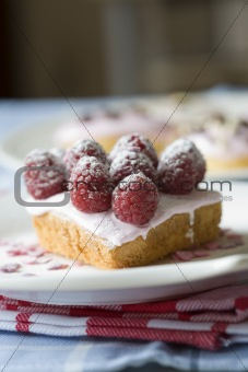 Small cupcakes with raspberries