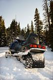 Snowmobile in forest.