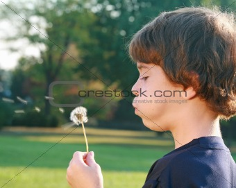 Boy Blowing Seeds