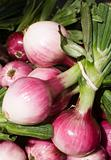 Market Fresh Onions