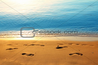 footprints on sand along sea at dawn