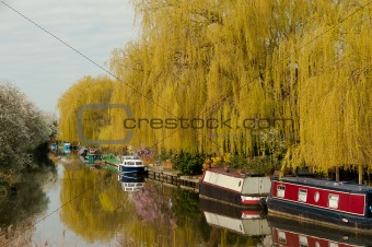 Canal and narrow boats