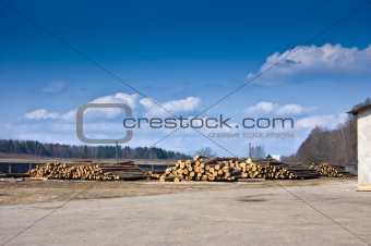 On the sawmill