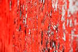 Red paint shallow DOF