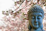 Zen Buddha Meditating Under Cherry Blossom Trees