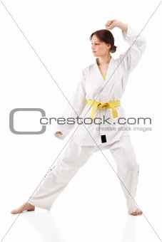 young sexy women in a karate pose