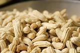 Ripe peanut