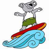 Koala Surfing