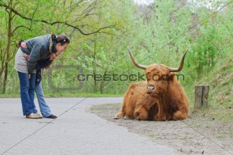 Mom and daughter for a walk watching Highland Bull