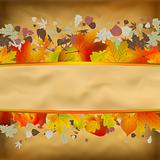Autumn Vintage Background On Old Paper. EPS 8