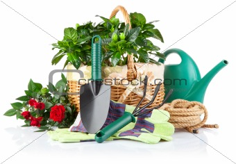 garden equipment with green plants and flowers