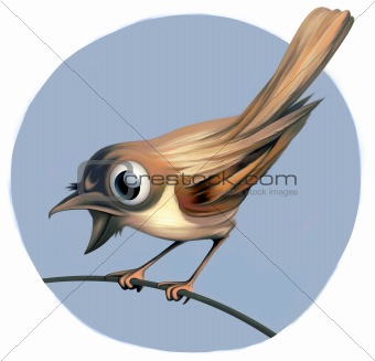Small playful and surprised Bird on a Twig with a big glittering Eye. Blue Sky in the background