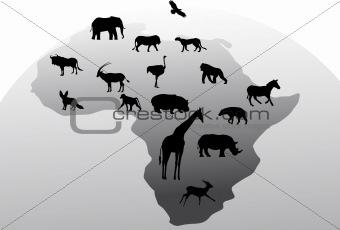 Animal Africa