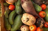 Different vegetables