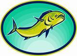 dolphin fish or mahi mahi