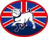 Proud English bulldog marching with British flag