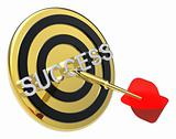 Red dart on the gold target with success text on it.
