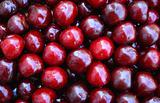 Wet ripe cherries as background