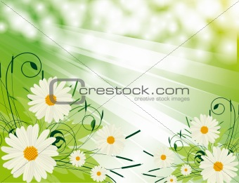 Abstract background with white flowers