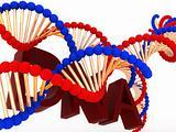 DNA tehnology