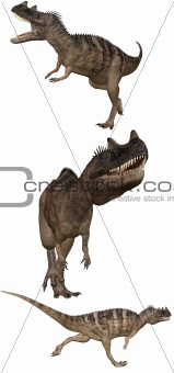 Ceratosaurus