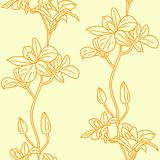 Vector seamless background with orchids