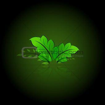 Green leaves eps10