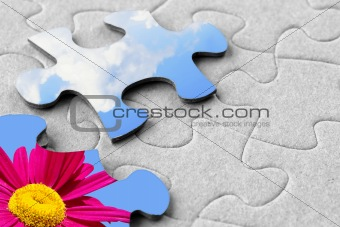 A piece of sky and flower