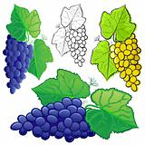 Grape set