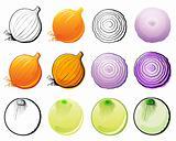Onions set