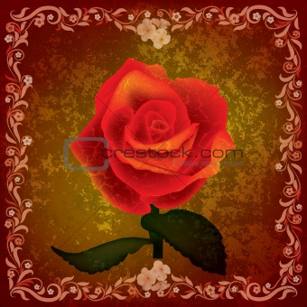 abstract grunge illustration with rose