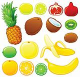 Tropical fruits set with color outlines